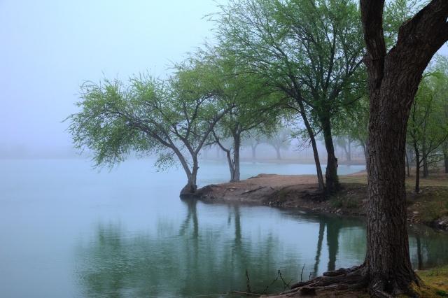 Hobbs in Fog